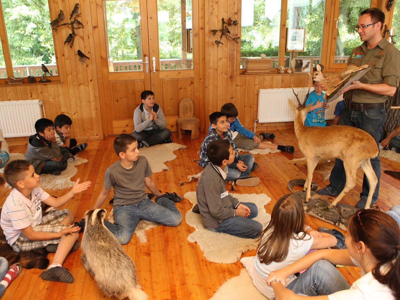 Sonst ist die Waldschule Ottakring nur für Schulklassen geöffnet, am 12. Mai ist Tag der offenen Tür.