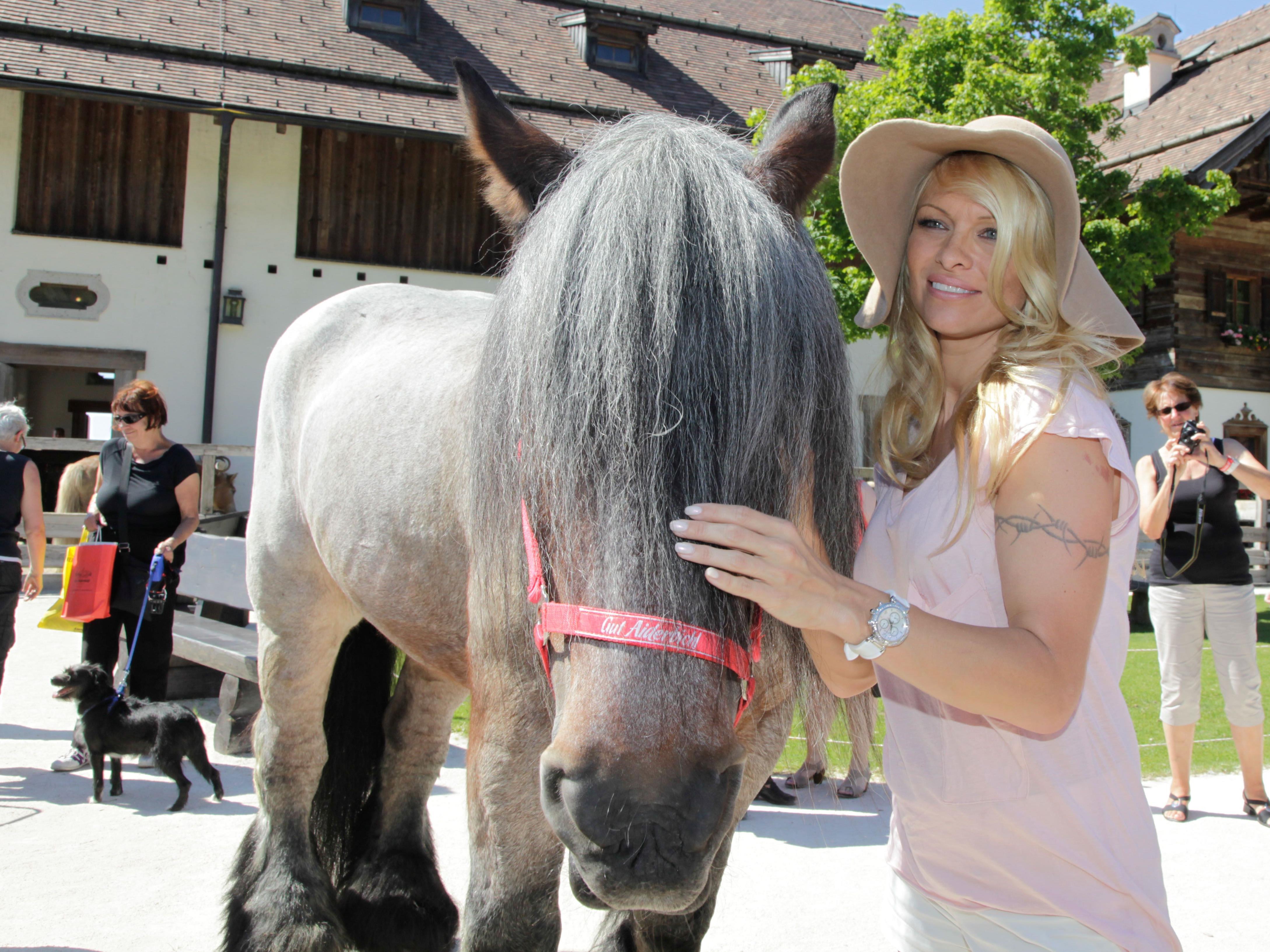 Pamela Anderson zu Besuch auf Gut Aiderbichl in Henndorf bei Salzburg.