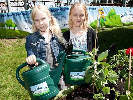 Wenn Schulkinder die Freude am Urban Gardening entdecken