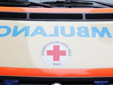 Schwer verletzt, aber nicht in Lebensgefahr, wurde der Bub nach dem Verkehrsunfall am Freitag ins Spital gebracht.