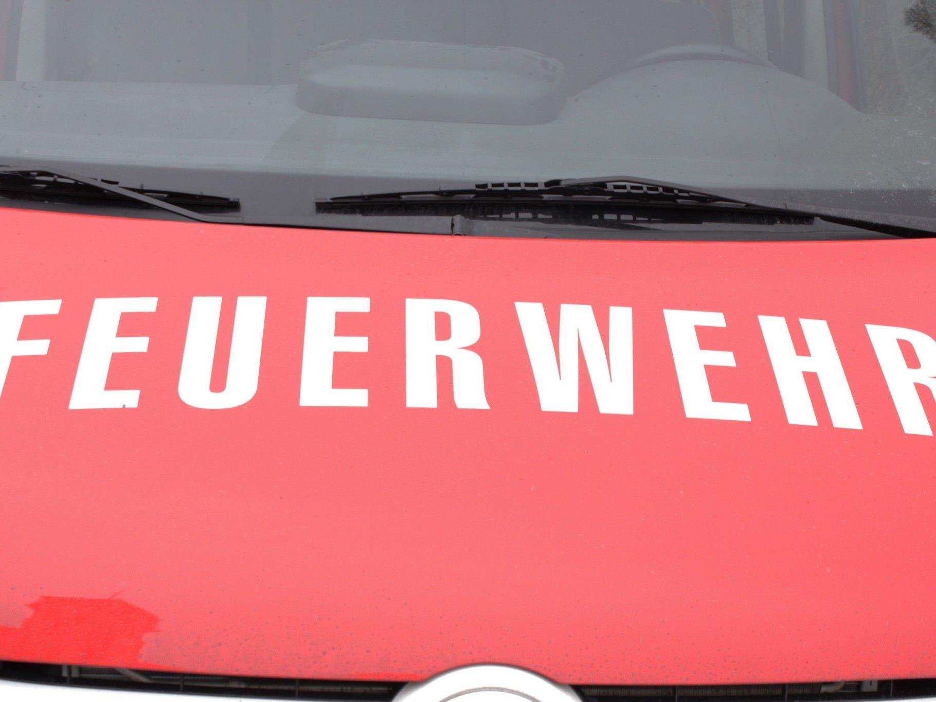 Unter Atemschutz musste die Feuerwehr den Zimmerbrand in Floridsdorf löschen