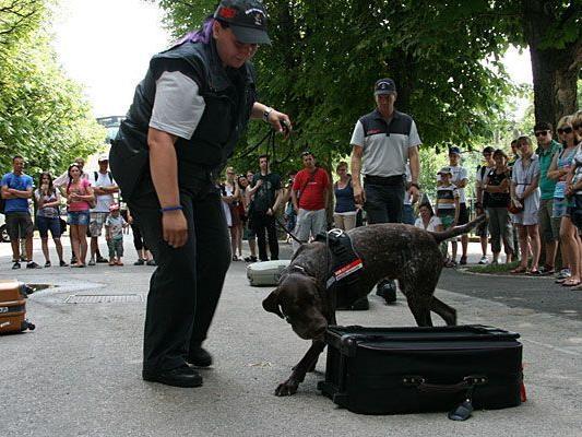 """Regina Eitel und Zollhund """"Lord"""" bei der Vorführung im Tiergarten Schönbrunn"""