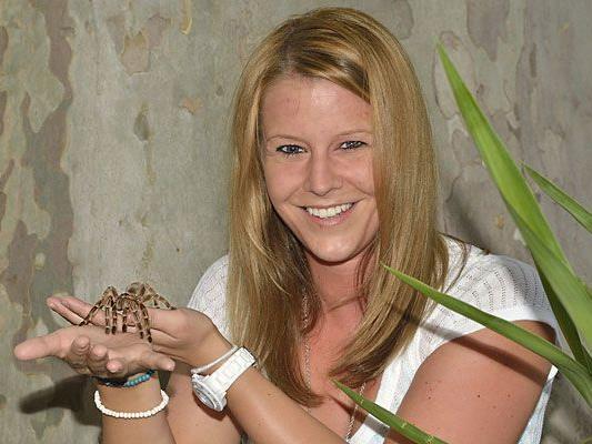 Achtbeiner hautnah: Auf Tuchfühlung mit den gefürchteten Spinnen im Tiergarten Schönbrunn