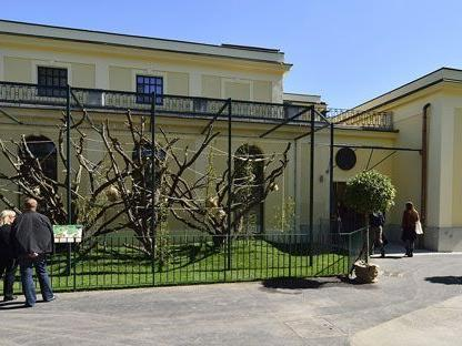 Bei freiem Eintritt kann der Tiergarten Schönbrunn am 31. juli besucht werden.