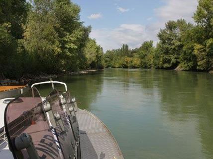 Der jährliche Aktionstag soll auf den Schutz des Gebiets um die Donau aufmerksam machen.