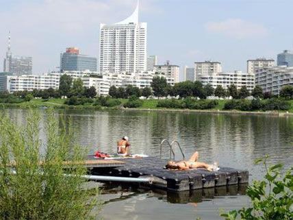 Die Donau wird nicht nur in Österreich geschützt - eine internationale Kooperation wurde jetzt verlängert.