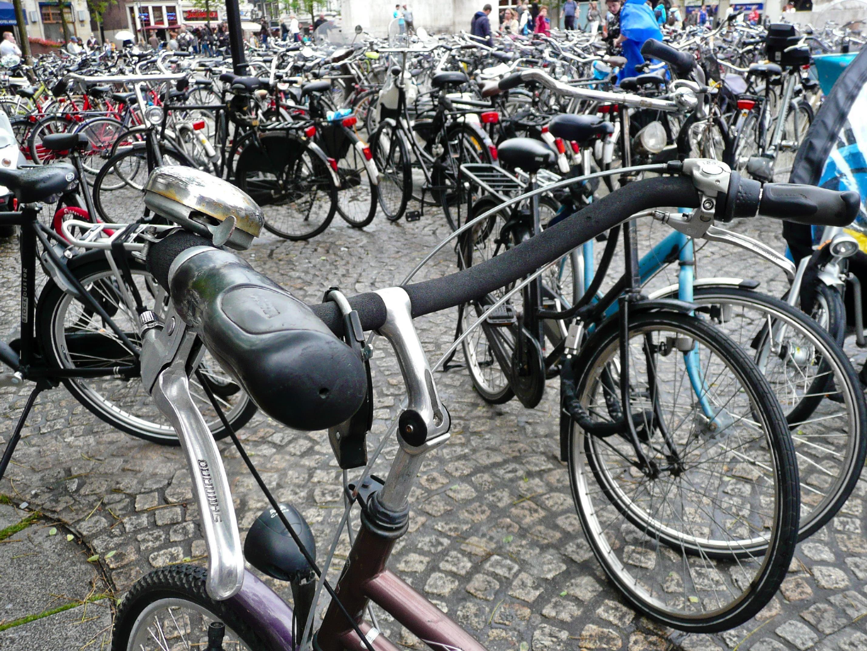 Jede Menge teure Fahrräder klaute die Frau in Baden und Mödling.
