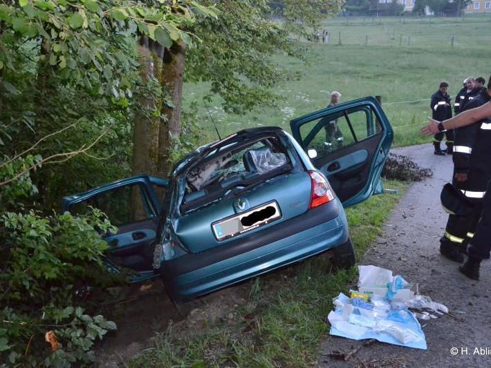 Die beiden 18-Jährigen gerieten während der Fahrt ins Schleudern.