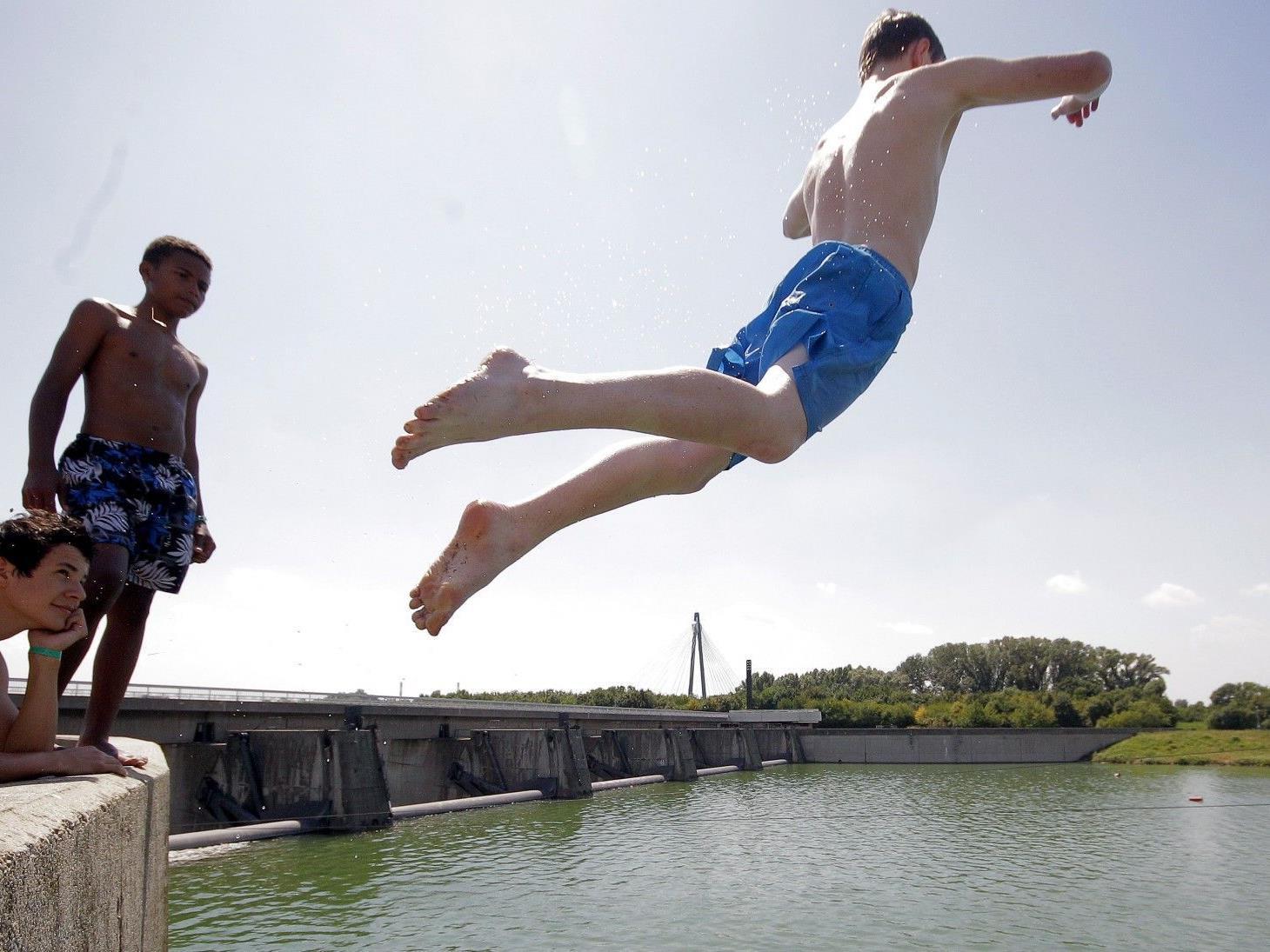 Jugendliche springen in Wien in Wasser mit hoher Qualität.