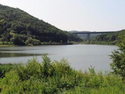 Die Leiche eines Mannes wurde am Samstag am Wienerwaldsee entdeckt.