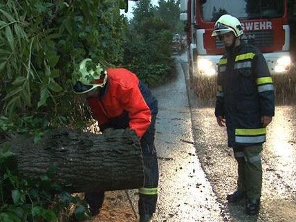 Am Donnerstag kam es wegen der Unwetter zu zahlreichen Feuerwehreinsätzen in Niederösterreich.