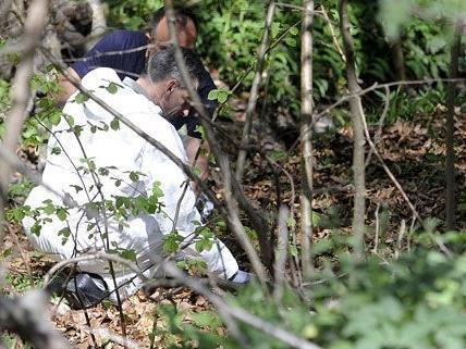 18-Jähriger nach Zeltfest vermisst: Leiche angeblich in Böschung in Niederösterreich gefunden