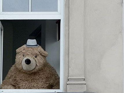 Die Bekanntheit des Gürtelbären wird jetzt genutzt, um Spielzeug für kranke Kinder zu sammeln.