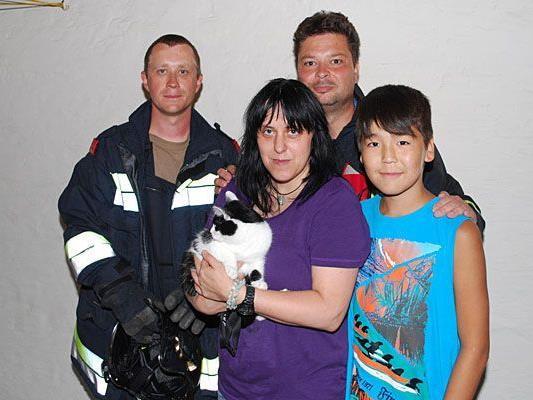 """Katze """"Penny"""" wurde im Bezirk Neunkirchen von einem Dach gerettet"""