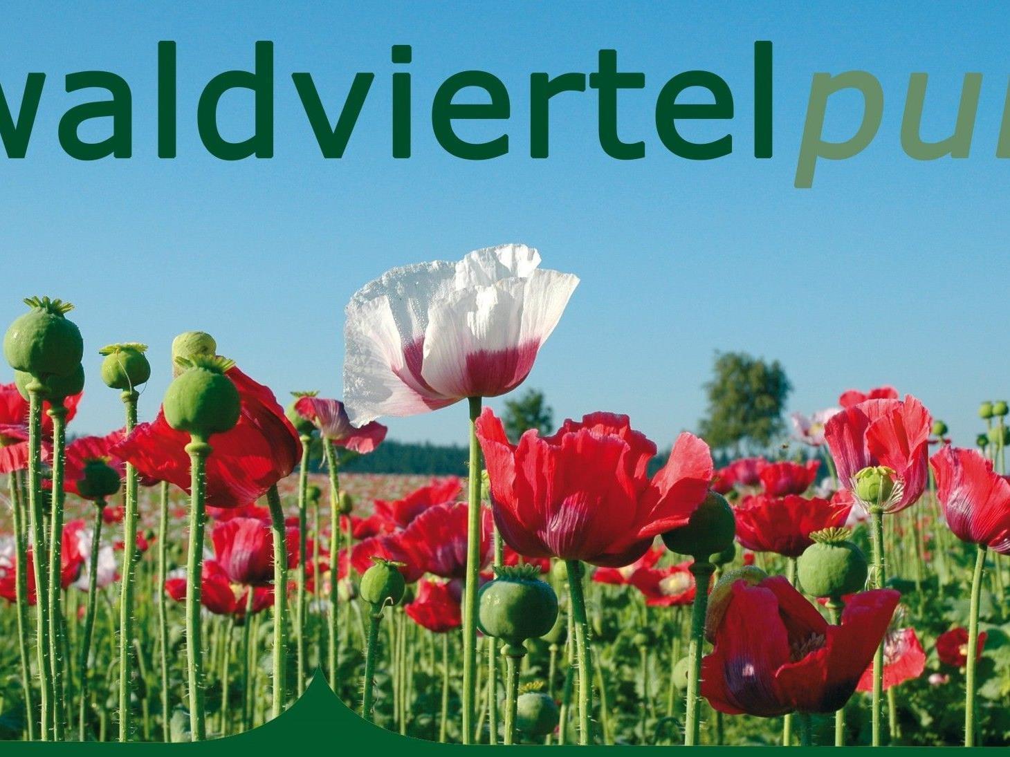 waldviertelpur startet am 27. August 2012 am Wiener Heldenplatz.
