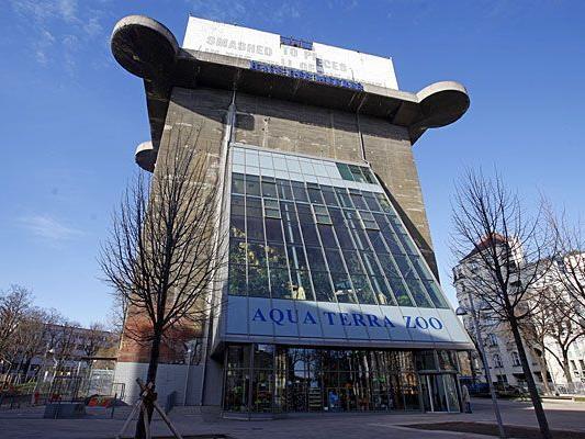 Alles neu im Haus des Meeres in Wien: Es wird aufgestockt und erhält ein Steinkorallenaquarium