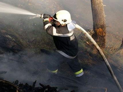 Wald in Muggendorf fing Feuer