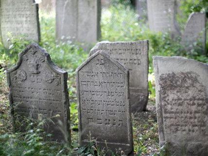 Letzte Ruhe als Ziel: Friedhofs-Navi zeigt Weg zu Wiener Gräbern
