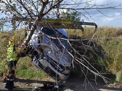 Pkw landete bei Unfall in Baum