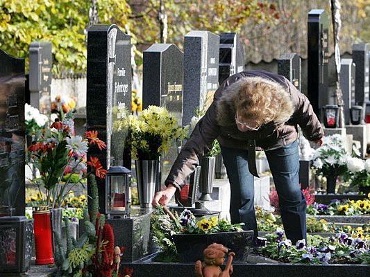 Grabpflege zu Allerheiligen auf einem Friedhof in Wien