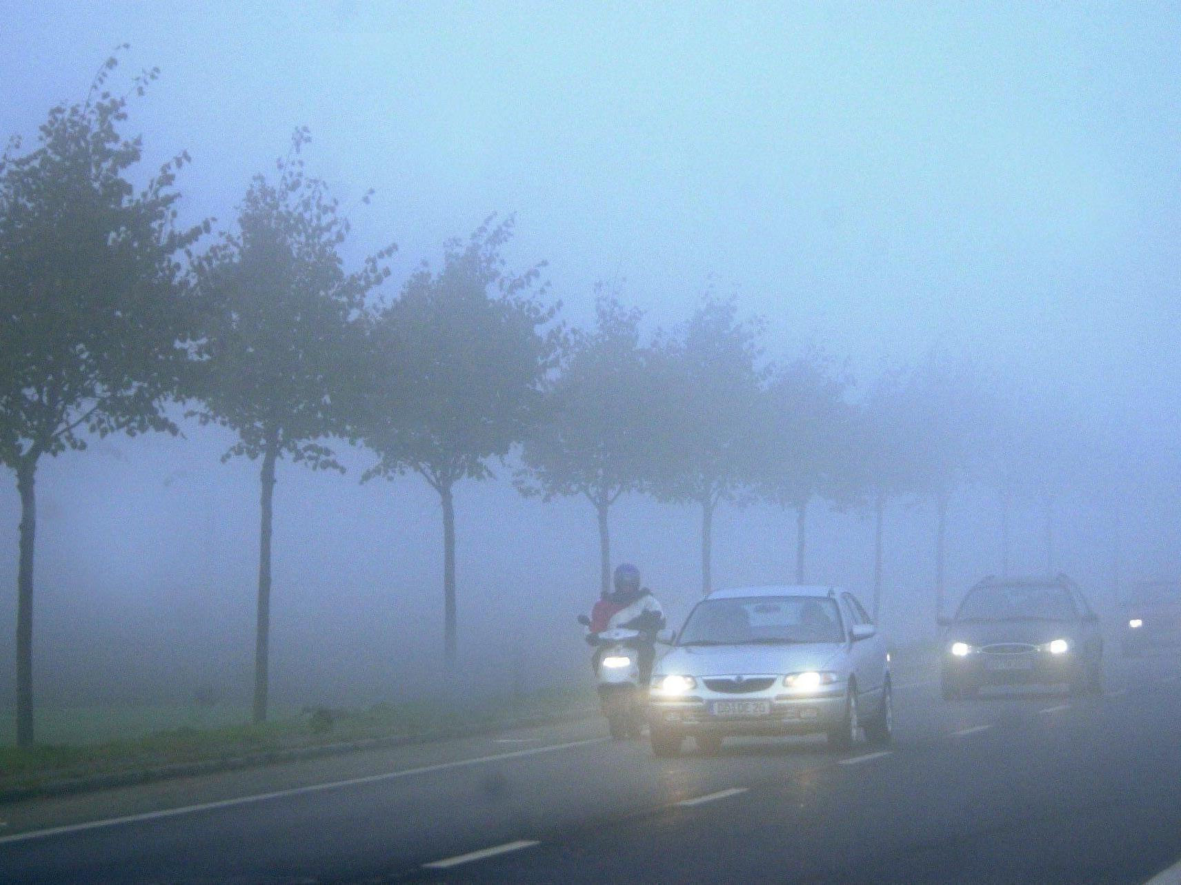"Besonders das ""Lemmingverhalten"" fordert viele Unfälle bei Nebel."