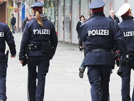 Polizisten versuchten der Randaliererin in Penzing beizukommen