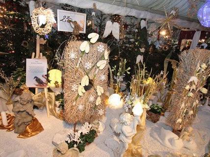 Bunte Weihnachtsschau 2012 in den Blumengärten Hirschstetten.