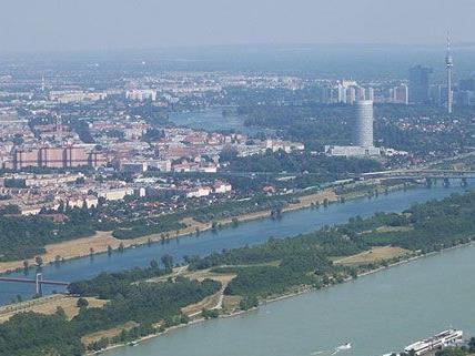 Am Mittwoch kam es auf der Donauinsel in Wien-Floridsdorf zu einer Festnahme.