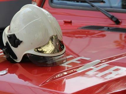 Drei Personen wurden bei dem Brand in Wiener Neustadt verletzt.