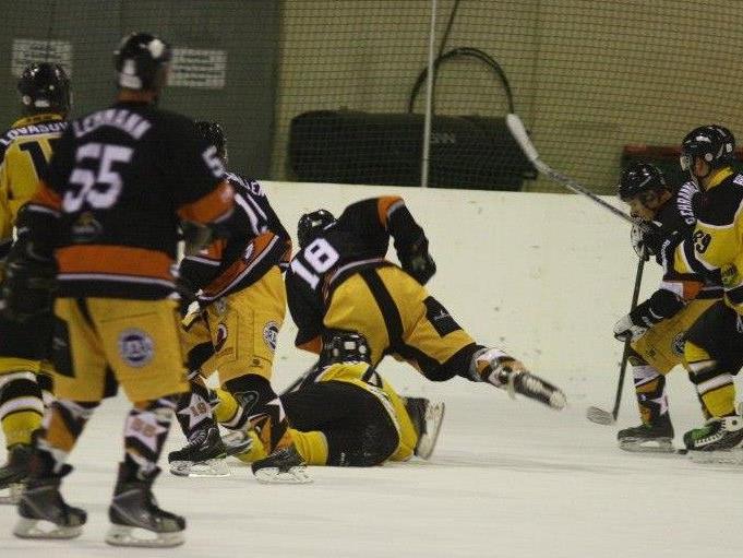 Die Eislöwen konnten sich gegen die Wiener Wölfe mit 6:4 durchsetzen.