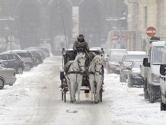 Blühen uns weiße Weihnachten in Wien?