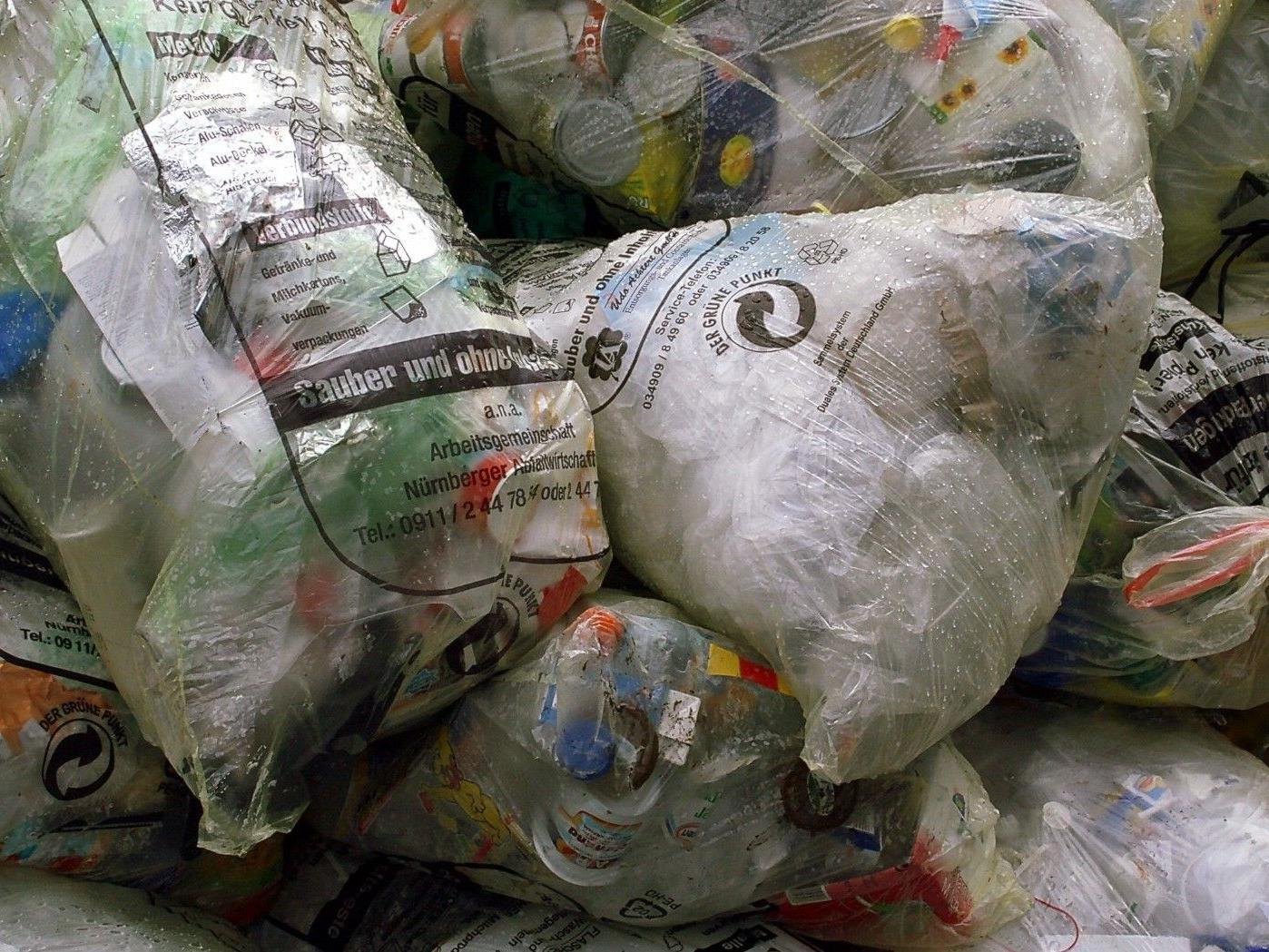 Die ehemalige Mülldeponie in Gerasdorf soll 2013 saniert werden.