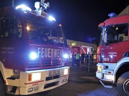 Die Feuerwehr in Niederösterreich musste in den frühen Morgenstunden ausrücken.
