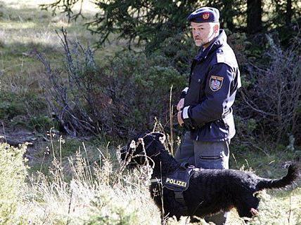 Montagabend suchte ein Großaufgebot an Helfern mit Hunden und einem Hubschrauber nach dem vermissten Rumänen und fand zufällig einen Lebensmüden auf den Bahngleisen.