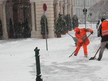 Das Schnee-Wetter hat Wien fest im Griff, die MA 48 ist im Einsatz.