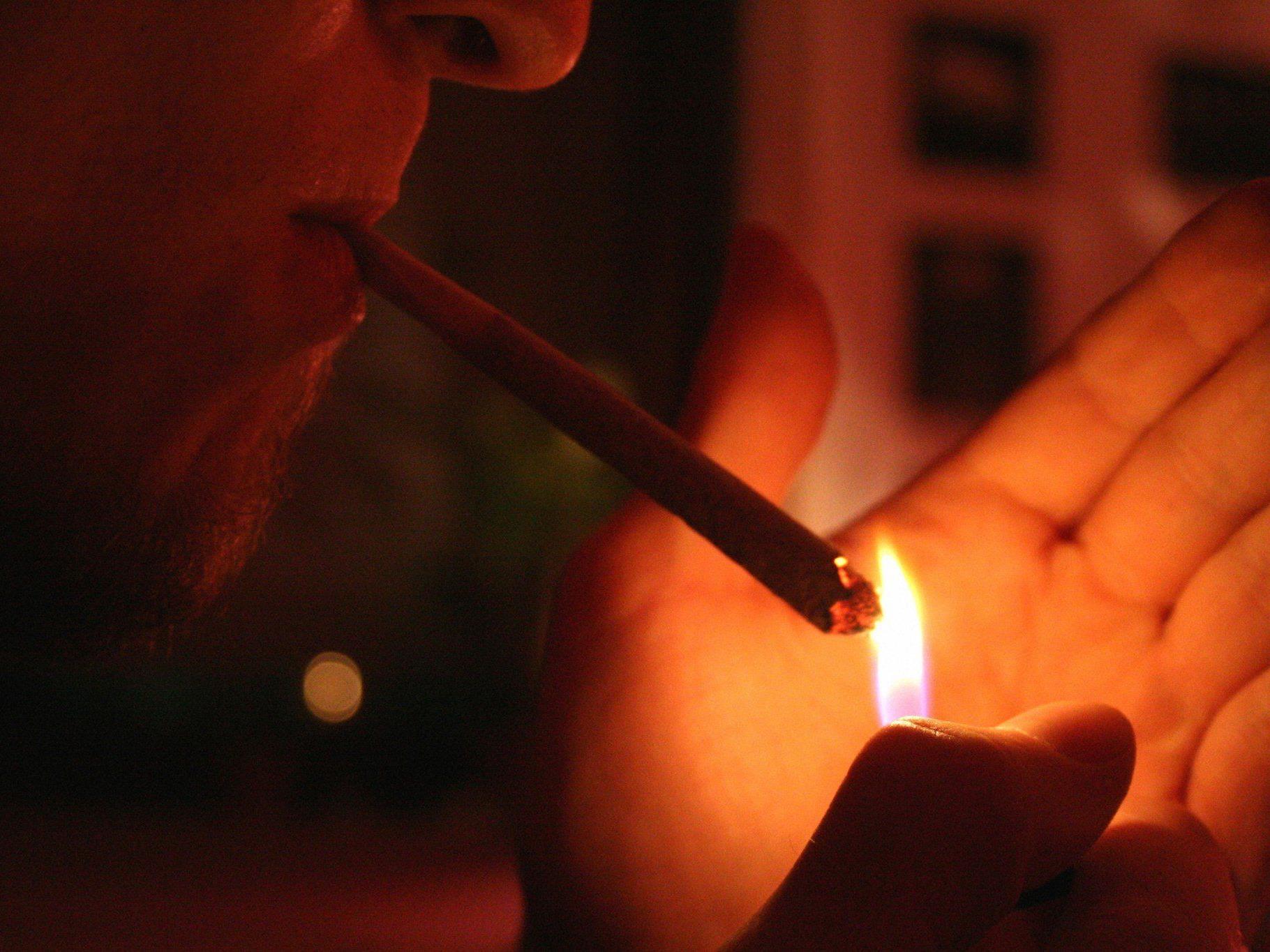 Der Wert der Drogen wird etwa auf 1,5 Millionen Euro geschätzt.