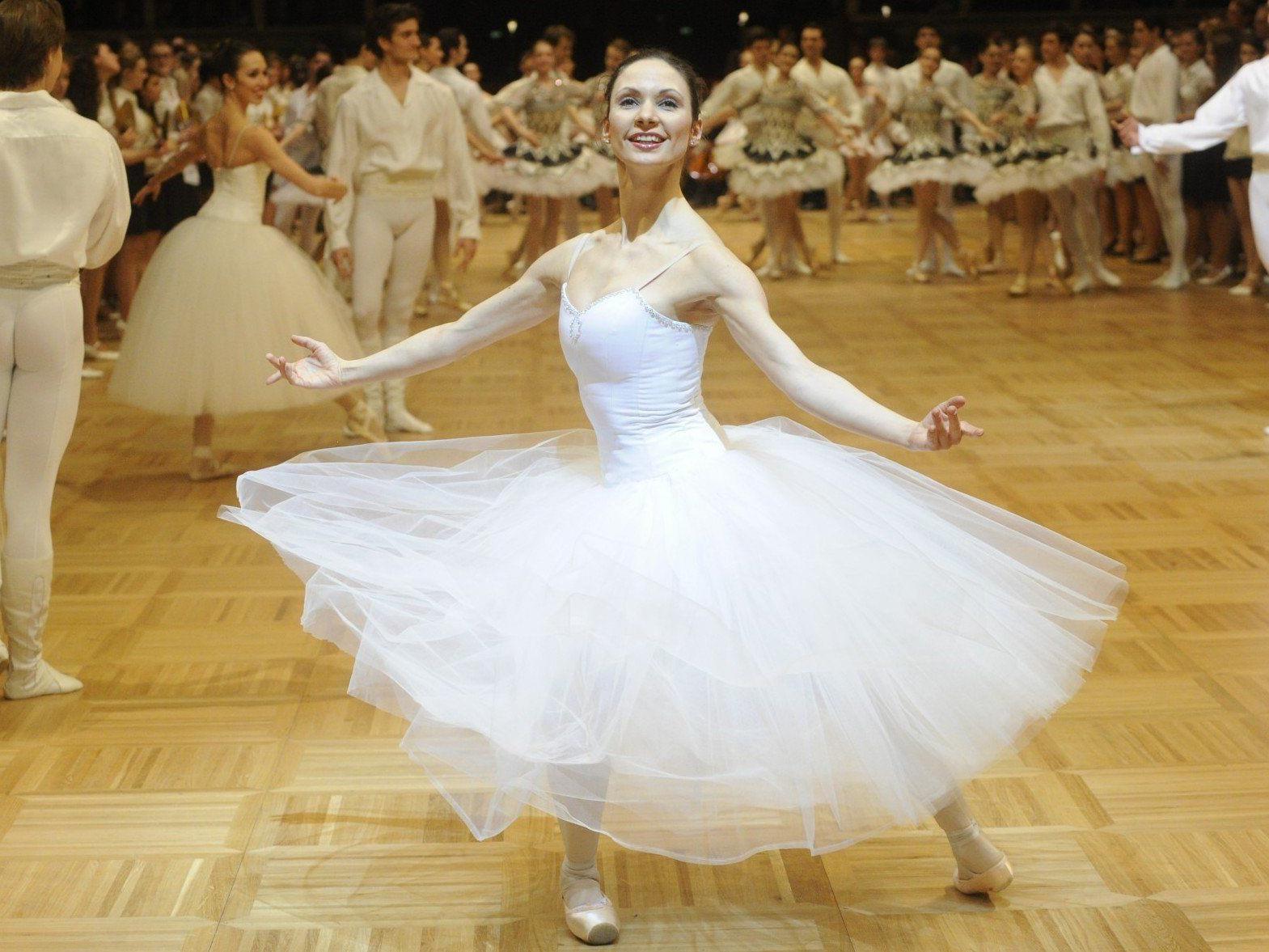 Hier finden Sie alle Bilder zum Opernball 2013.