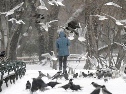 Am Wochenende soll es in Österreich erneut schneien.