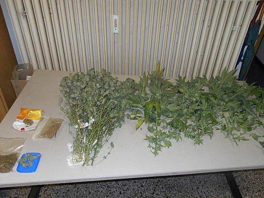Diese Cannabis-Produkte fand man in der Wohnung in der Linzer Straße