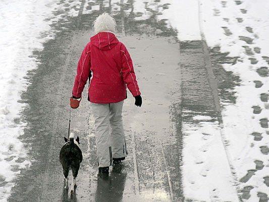Auf leicht angezuckerte Straßen muss sich Wien einstellen - das große Schnee-Chaos bleibt aber aus