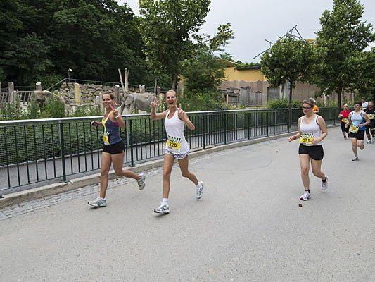 Laufen zwischen Elefanten und Co.: Spaß beim Wiener Zoolauf