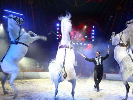 Ab dem 15. März gastiert der Circus Louis Knie in Wien-Liesing.