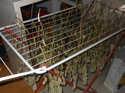 Drogen in einer Wohnung in Penzing gefunden.