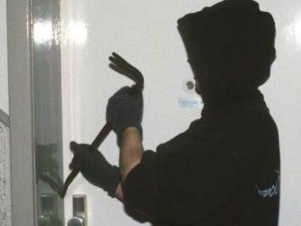 Zwei Polizisten wurden am Montag von Einbrechern verletzt.