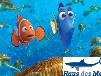 Vienna.at verlost Tickets für das Haus des Meeres und 3 DVD's und Blu-rays von Findet Nemo