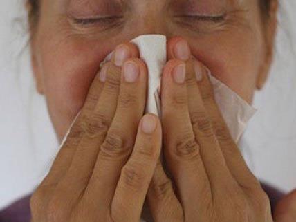Influenza offenbar am Abflauen - 15.800 Neuerkrankungen in Wien
