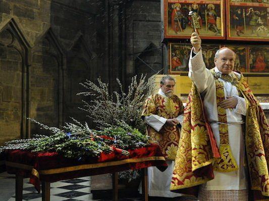 Kardinal Christoph Schönborn während der Palmweihe im Wiener Stephansdom