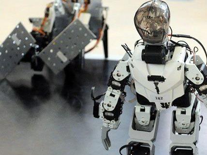 Heuer dominierten beim Roboter-Wettbewerb erneut Konstrukteure aus Polen.