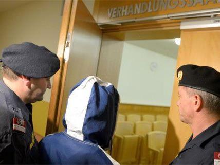 Die Frau muss sich nun in Wien vor Gericht verantworten.