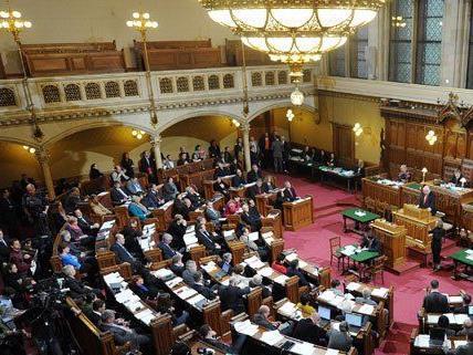 Am 14. und 15. März tagt die Wiener SPÖ in Rust.